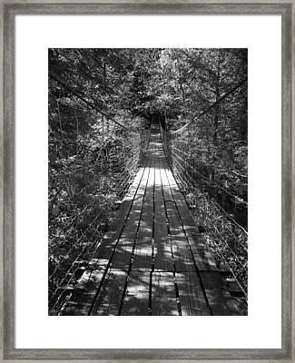 Walk Through Woods Framed Print