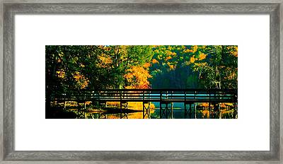 Framed Print featuring the photograph Walkway by Steve Godleski