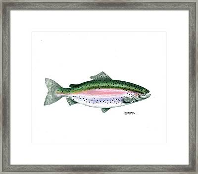 Wallace Brantley Sport Fishing Series Rainbow Trout Framed Print by Sharon Blanchard