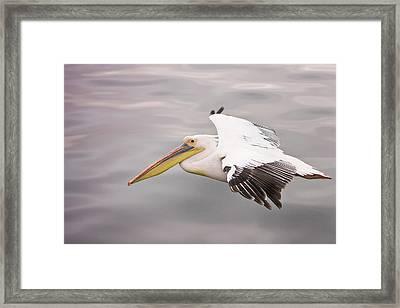 Walvis Bay, Namibia Framed Print