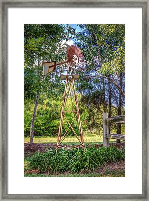 Framed Print featuring the photograph Warm Breeze by Rob Sellers