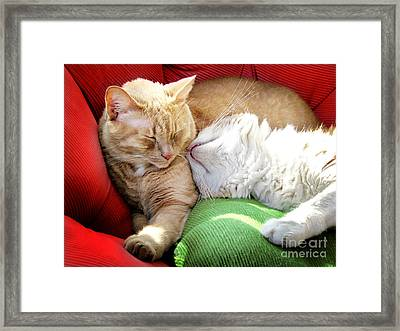 Warmth And Love For The Holidays Framed Print