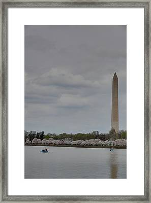 Washington Monument - Cherry Blossoms - Washington Dc - 01131 Framed Print by DC Photographer