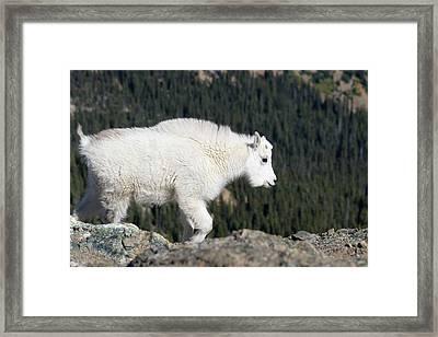 Washington State, Alpine Lakes Framed Print