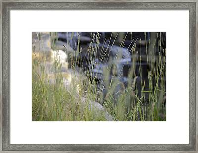 Water Is Life 2 Framed Print