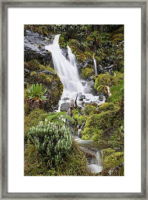 Waterfall At Mount Stanley, Ruwenzori Framed Print