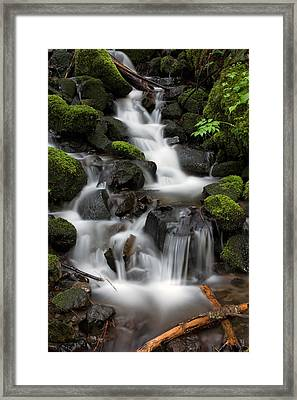 Framed Print featuring the photograph Waterfall Mount Rainier National Park by Bob Noble Photography