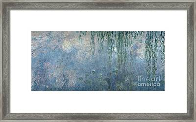 Waterlilies Morning With Weeping Willows Framed Print