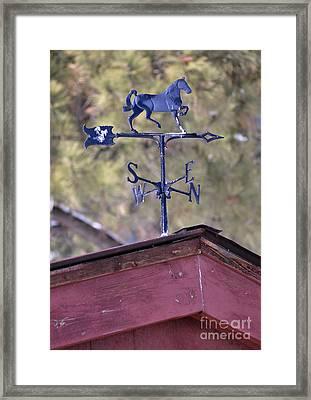 Weather Vane Framed Print