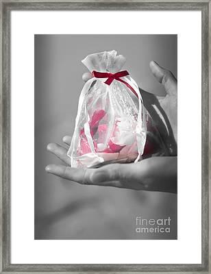 Wedding Celebration Framed Print by Jorgo Photography - Wall Art Gallery