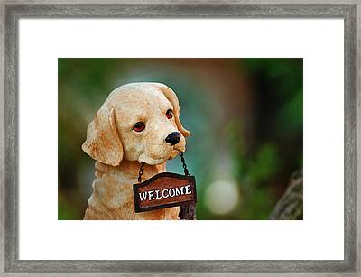 Welcome Framed Print by Orazio Puccio