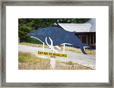 Whaling Museum Framed Print by Ashley Cooper