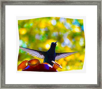 What Do We Have Here? Framed Print by Al Bourassa