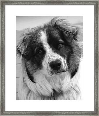 What'cha Doin' Framed Print