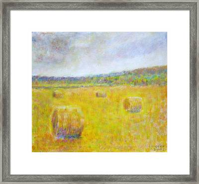 Wheat Bales At Harvest Framed Print