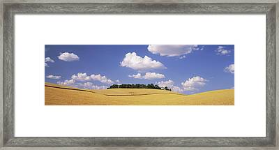 Wheat Crop In The Field, Washington Framed Print by Panoramic Images