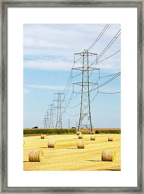 Wheat Stubble In A Field Framed Print by Ashley Cooper