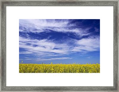 Framed Print featuring the photograph Where Land Meets Sky by Keith Armstrong