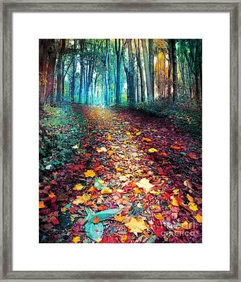 Where Leaves Gather Framed Print