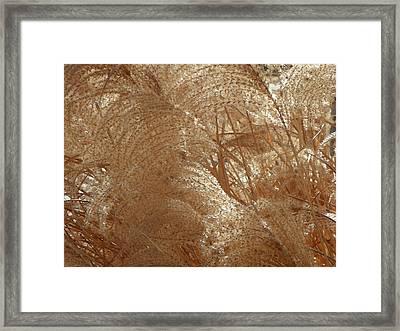 Whispers Framed Print by Lenore Senior