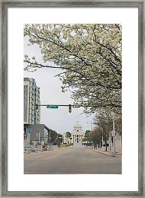 White Avenue Framed Print by Iryna Goodall