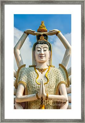 White Buddha Framed Print by Adrian Evans