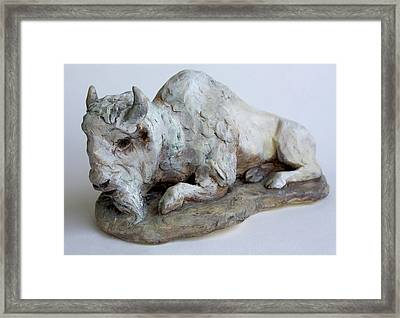 White Buffalo-sculpture Framed Print by Derrick Higgins