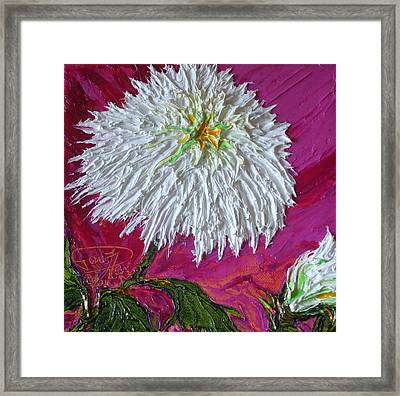 White Mum Framed Print by Paris Wyatt Llanso