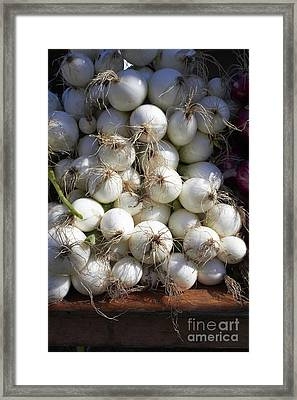 White Onions Framed Print