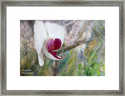 white Orchid Abstract Framed Print