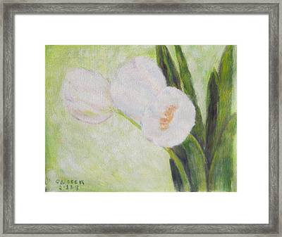 White Tulips On Stems With Foliage Framed Print