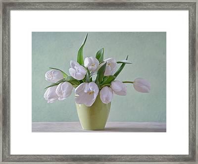 White Tulips  Framed Print by Steffen Gierok