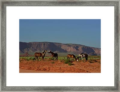 Wild Horses In Monument Valley Framed Print by Raul Touzon