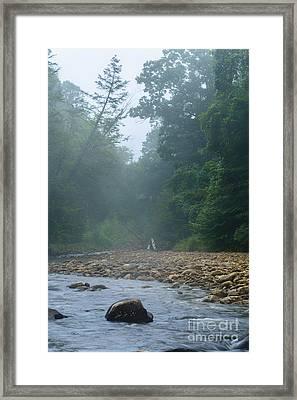 Williams River Summer Mist Framed Print