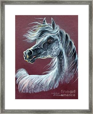 Wind In The Mane Framed Print