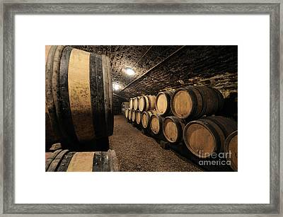 Wine Barrels In A Cellar. Cote D'or. Burgundy. France. Europe Framed Print