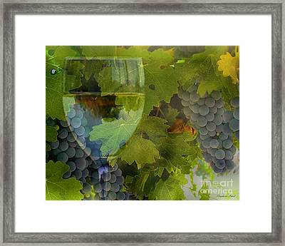 Wine Framed Print by Stephanie Laird