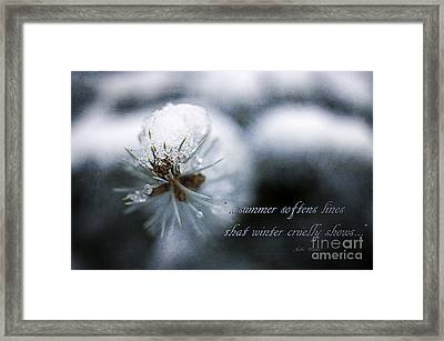 Winter Framed Print by Darren Fisher