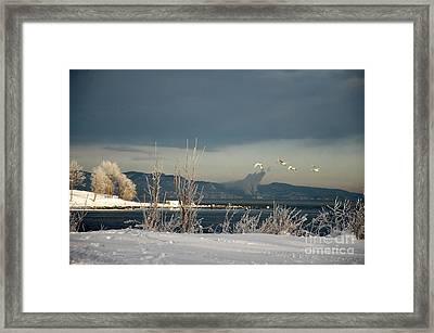 Winter Day Framed Print by Randi Grace Nilsberg