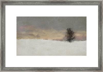 Winter Falling Framed Print by Ron Jones