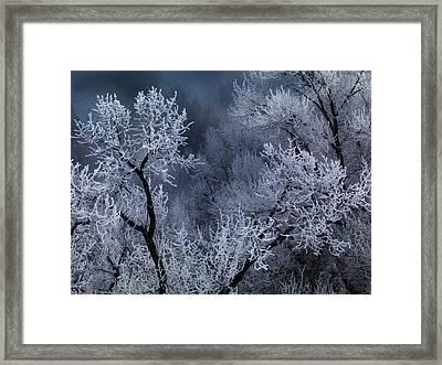 Winter Frost Framed Print by Leland D Howard