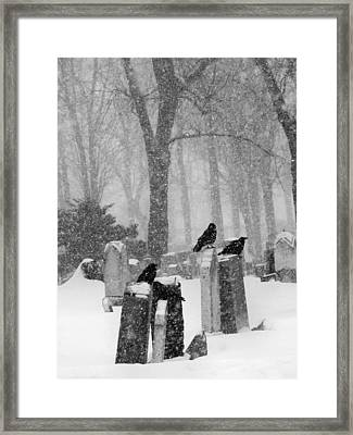Winter Graveyard With Crows In Falling Snow  Framed Print by Gothicrow Images