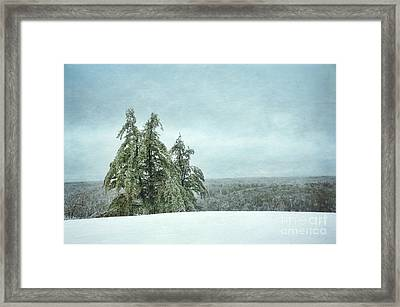 Winter Framed Print by HD Connelly