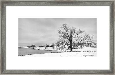 Winter In Kentucky Framed Print by Wendell Thompson