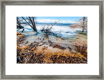 Winter Shore At Barr Lake Framed Print