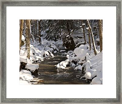 Framed Print featuring the photograph Winter Stream Win 67 by G L Sarti