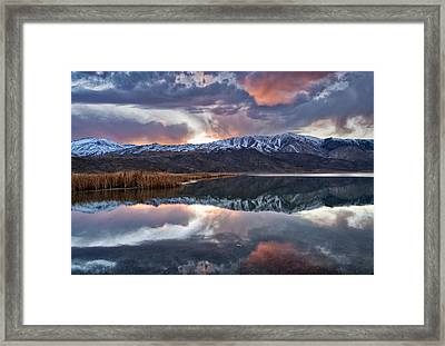 Winter Sunset Framed Print by Cat Connor