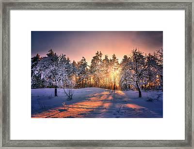 Winter Sunset Framed Print by Steffen Gierok