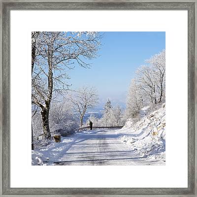 Winter Tree Germany Framed Print by Francesco Emanuele Carucci