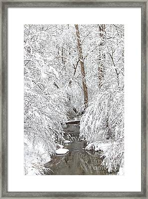 Winter Wonderland Framed Print by Benanne Stiens